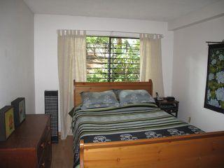 Photo 3: 104 349 E 6TH Avenue in Vancouver: Mount Pleasant VE Condo for sale (Vancouver East)  : MLS®# V842711