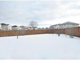 Photo 16: 156 CITADEL MEADOW Grove NW in CALGARY: Citadel Residential Detached Single Family for sale (Calgary)  : MLS®# C3552492