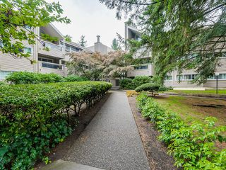 Photo 15: 117 932 ROBINSON STREET in Coquitlam: Central Coquitlam Condo for sale : MLS®# R2000788