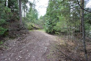 Photo 18: 2388 Waverly Drive: Blind Bay Vacant Land for sale (South Shuswap)  : MLS®# 10201100