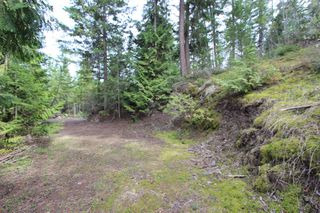 Photo 16: 2388 Waverly Drive: Blind Bay Vacant Land for sale (South Shuswap)  : MLS®# 10201100