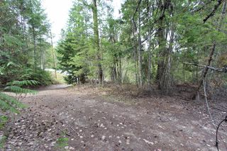 Photo 17: 2388 Waverly Drive: Blind Bay Vacant Land for sale (South Shuswap)  : MLS®# 10201100
