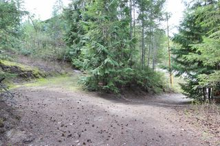Photo 7: 2388 Waverly Drive: Blind Bay Vacant Land for sale (South Shuswap)  : MLS®# 10201100