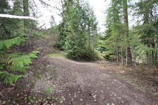 Photo 9: 2388 Waverly Drive: Blind Bay Vacant Land for sale (South Shuswap)  : MLS®# 10201100