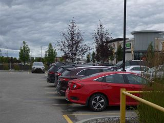 Photo 4: 0 0 in Edmonton: Zone 56 Business for sale : MLS®# E4169290