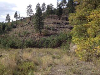 Photo 3: 825 COLUMBIA STREET: Lillooet Lots/Acreage for sale (South West)  : MLS®# 153542
