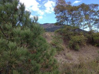 Photo 2: 825 COLUMBIA STREET: Lillooet Lots/Acreage for sale (South West)  : MLS®# 153542