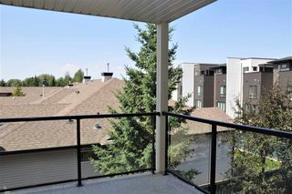 Photo 18: 321 1320 RUTHERFORD Road SW in Edmonton: Zone 55 Condo for sale : MLS®# E4208644