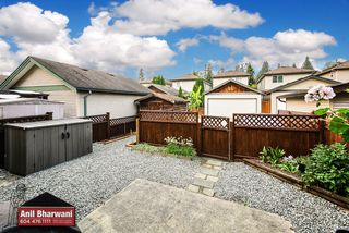 "Photo 52: 24113 102 Avenue in Maple Ridge: Albion House for sale in ""Homestead"" : MLS®# R2499816"