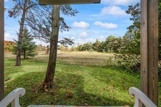 Photo 37: 596302 2nd Line W in Mulmur: Rural Mulmur House (Bungalow) for sale : MLS®# X4944153