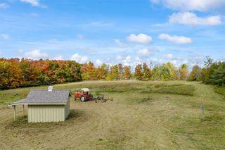 Photo 38: 596302 2nd Line W in Mulmur: Rural Mulmur House (Bungalow) for sale : MLS®# X4944153