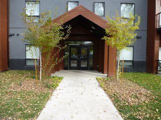 Photo 3: 207 10006 83 Avenue in Edmonton: Zone 15 Condo for sale : MLS®# E4219242