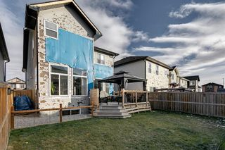 Photo 42: 43 Skyview Shores Link NE in Calgary: Skyview Ranch Detached for sale : MLS®# A1045860
