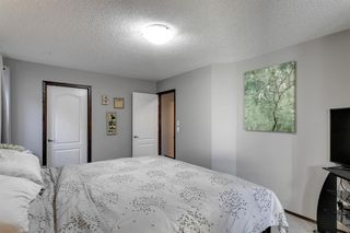 Photo 31: 43 Skyview Shores Link NE in Calgary: Skyview Ranch Detached for sale : MLS®# A1045860