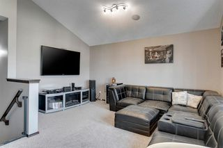 Photo 20: 43 Skyview Shores Link NE in Calgary: Skyview Ranch Detached for sale : MLS®# A1045860