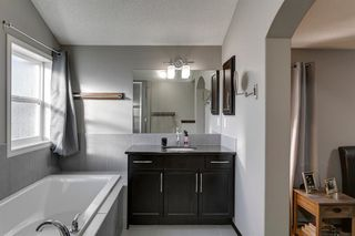 Photo 25: 43 Skyview Shores Link NE in Calgary: Skyview Ranch Detached for sale : MLS®# A1045860