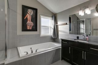 Photo 26: 43 Skyview Shores Link NE in Calgary: Skyview Ranch Detached for sale : MLS®# A1045860
