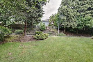 Photo 4: #11 - 19696 Hammond Rd Pitt Meadows For Sale