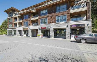 Photo 19: 402 3732 Mt Seymour Parkway in North Vancouver: Indian River Condo  : MLS®# R2273963