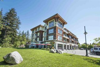 Photo 18: 402 3732 Mt Seymour Parkway in North Vancouver: Indian River Condo  : MLS®# R2273963
