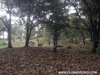 Photo 24: House for sale in Cerro Azul