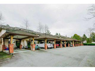 Main Photo: 22737 GILLEY AV in Maple Ridge: East Central Condo for sale : MLS®# V1108009