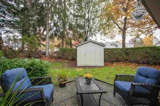 Photo 18: 6088 W GREENSIDE DRIVE in Surrey: Cloverdale BC Townhouse for sale (Cloverdale)  : MLS®# R2318848