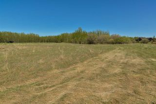 Photo 4: 63 53521 RGE RD 272: Rural Parkland County Rural Land/Vacant Lot for sale : MLS®# E4181211