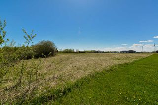 Photo 9: 63 53521 RGE RD 272: Rural Parkland County Rural Land/Vacant Lot for sale : MLS®# E4181211