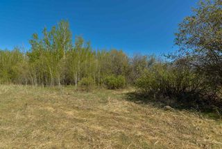 Photo 6: 63 53521 RGE RD 272: Rural Parkland County Rural Land/Vacant Lot for sale : MLS®# E4181211