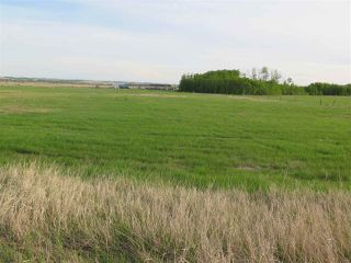 Photo 9: 45063B TWP RD 734 (KLESKUN WEST): Rural Grande Prairie County Rural Land/Vacant Lot for sale : MLS®# E4190065