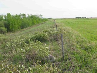 Photo 11: 45063B TWP RD 734 (KLESKUN WEST): Rural Grande Prairie County Rural Land/Vacant Lot for sale : MLS®# E4190065