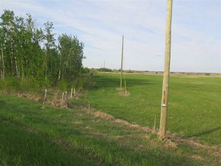 Photo 14: 45063B TWP RD 734 (KLESKUN WEST): Rural Grande Prairie County Rural Land/Vacant Lot for sale : MLS®# E4190065