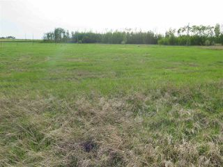 Photo 10: 45063B TWP RD 734 (KLESKUN WEST): Rural Grande Prairie County Rural Land/Vacant Lot for sale : MLS®# E4190065