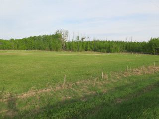 Photo 15: 45063B TWP RD 734 (KLESKUN WEST): Rural Grande Prairie County Rural Land/Vacant Lot for sale : MLS®# E4190065