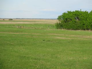 Photo 16: 45063B TWP RD 734 (KLESKUN WEST): Rural Grande Prairie County Rural Land/Vacant Lot for sale : MLS®# E4190065