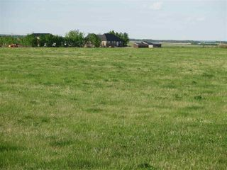Photo 2: 45063B TWP RD 734 (KLESKUN WEST): Rural Grande Prairie County Rural Land/Vacant Lot for sale : MLS®# E4190065
