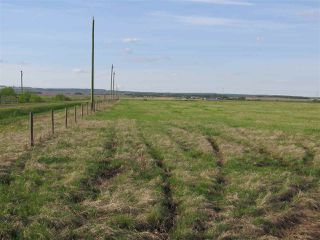 Photo 3: 45063B TWP RD 734 (KLESKUN WEST): Rural Grande Prairie County Rural Land/Vacant Lot for sale : MLS®# E4190065