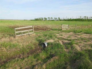Photo 1: 45063B TWP RD 734 (KLESKUN WEST): Rural Grande Prairie County Rural Land/Vacant Lot for sale : MLS®# E4190065