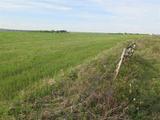 Photo 13: 45063B TWP RD 734 (KLESKUN WEST): Rural Grande Prairie County Rural Land/Vacant Lot for sale : MLS®# E4190065