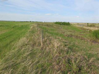 Photo 6: 45063B TWP RD 734 (KLESKUN WEST): Rural Grande Prairie County Rural Land/Vacant Lot for sale : MLS®# E4190065