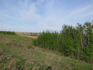 Photo 5: 45063B TWP RD 734 (KLESKUN WEST): Rural Grande Prairie County Rural Land/Vacant Lot for sale : MLS®# E4190065