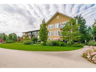 Photo 40: 307 23285 BILLY BROWN Road in Langley: Fort Langley Condo for sale : MLS®# R2459874
