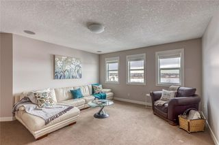 Photo 20: 212 COPPERPOND Circle SE in Calgary: Copperfield Detached for sale : MLS®# C4305503