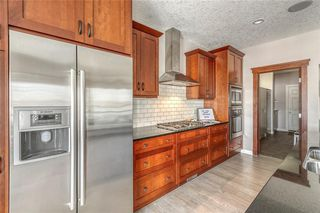 Photo 16: 212 COPPERPOND Circle SE in Calgary: Copperfield Detached for sale : MLS®# C4305503