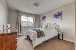 Photo 28: 212 COPPERPOND Circle SE in Calgary: Copperfield Detached for sale : MLS®# C4305503