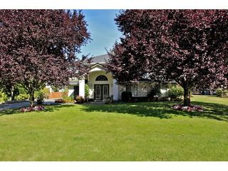 Photo 1: 22075 44A Avenue in LANGLEY: Murrayville House for sale (Langley)  : MLS®# F1222580