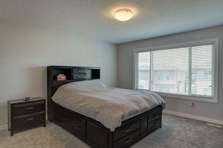 Photo 20: 31 CRANBROOK CR SE in Calgary: Cranston House for sale : MLS®# C4211246