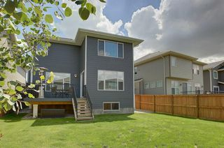 Photo 28: 31 CRANBROOK CR SE in Calgary: Cranston House for sale : MLS®# C4211246