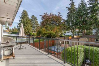 Photo 17: 21616 EXETER AVENUE in Maple Ridge: West Central House for sale : MLS®# R2318244